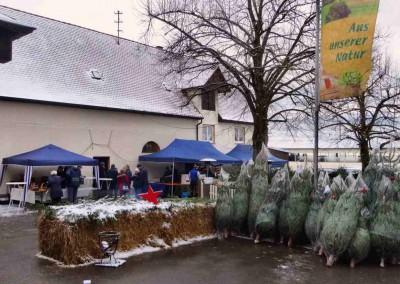 2017_Weihnachtsmarkt016